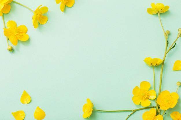 緑の紙の背景に黄色のキンポウゲ