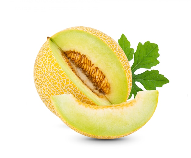 Yellow cantaloupe melon with leaves on white wall.