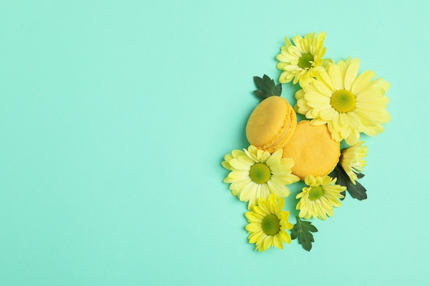 Yellow chrysanthemums and macaroons on mint background.