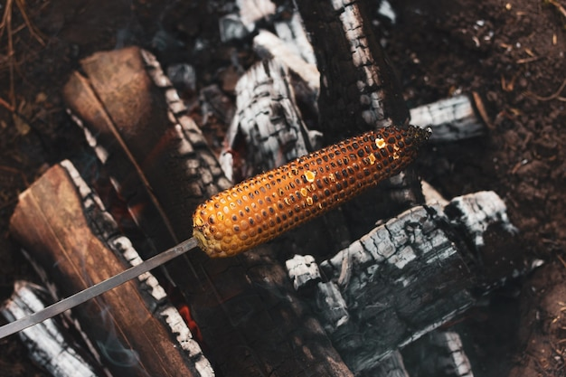 Yellow corn is grilled on open coals in the open air, close-up.