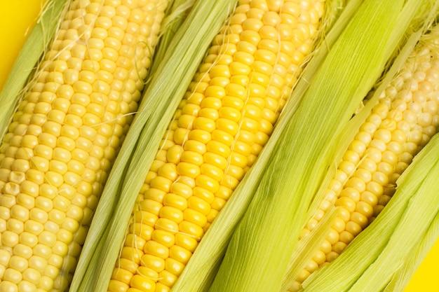 Желтый кукуруза кукуруза фон