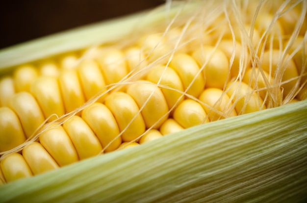 Желтый початок кукурузы с листьями и шелком