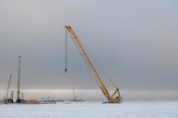 Yellow crane in winter tundra. works in siberian tundra.
