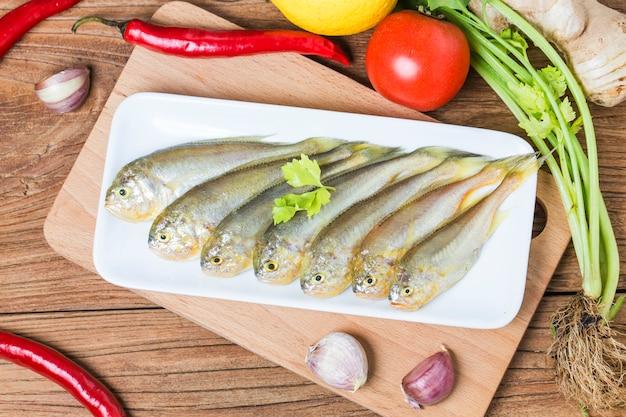 Yellow croaker fish