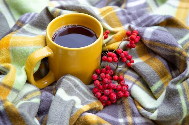 A yellow cup of tea stands on a plaid. there is a bunch of mountain ash next to the mug. homeliness