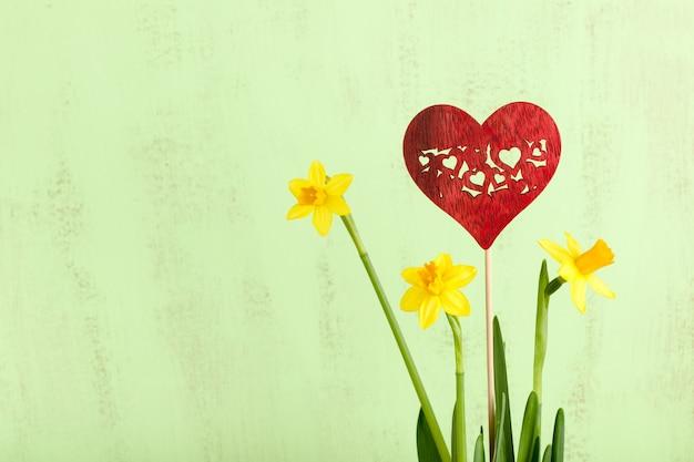 녹색, 나무 배경, 클로즈업에 노란 수선화 꽃과 붉은 장식 심장