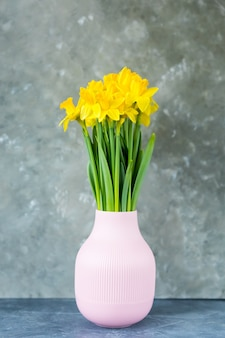 Yellow daffodils spring flowers in a vase on a grey background