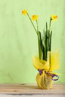 녹색, 나무 배경, 클로즈업에 노란색으로 장식된 수선화 꽃