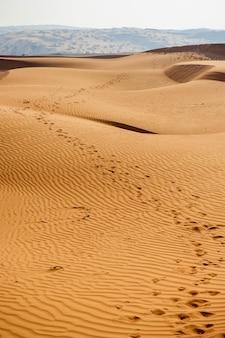 黄色い砂漠の砂丘と空