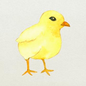 노란색 부활절 새 디자인 요소 귀여운 수채화 그림