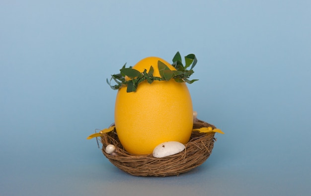 Yellow easter egg in nest on blue background