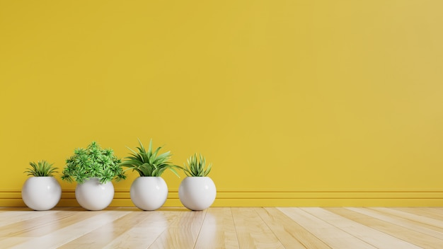 Yellow empty room with plants on a floor.