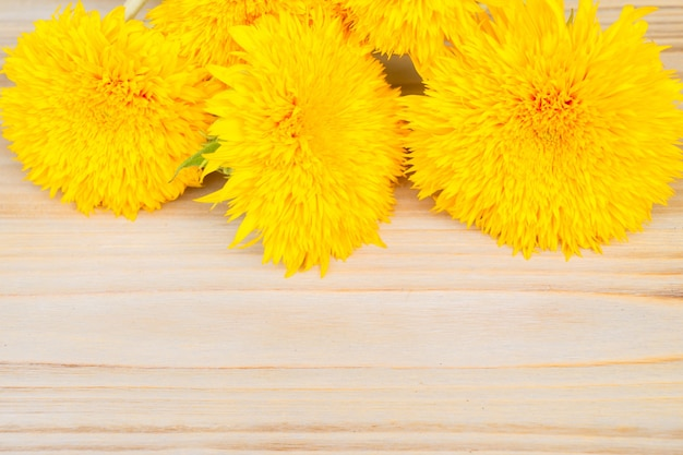 Yellow fall sunflowers border on on wooden background with copy space