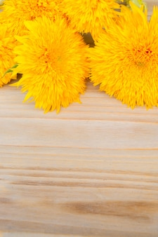 Yellow fall sunflowers on on wooden background with copy space