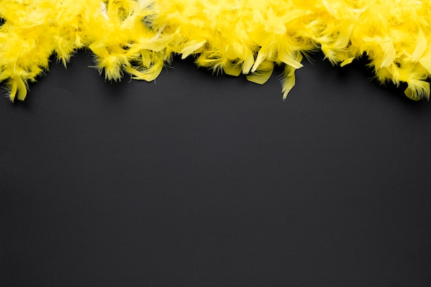 Yellow feather boa with copy space