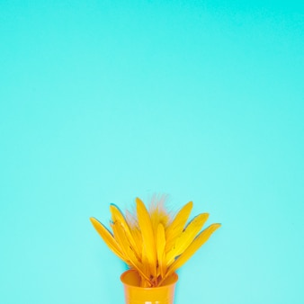 Yellow feather in the disposable glass against turquoise background