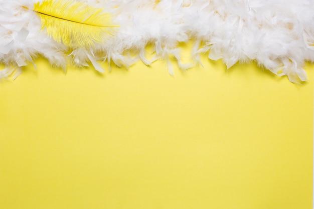 Yellow feather on white
