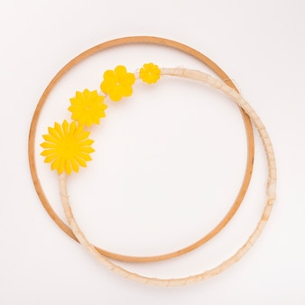 Yellow flower circular frame on white backdrop