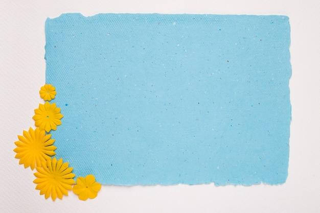 Yellow flower on the corner of blue torn paper against white backdrop