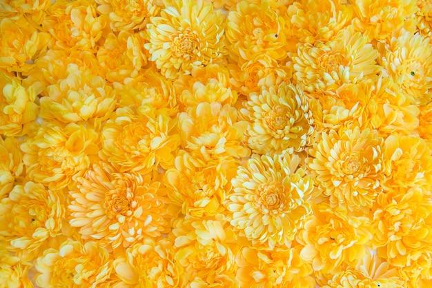 背景のための黄色の花。