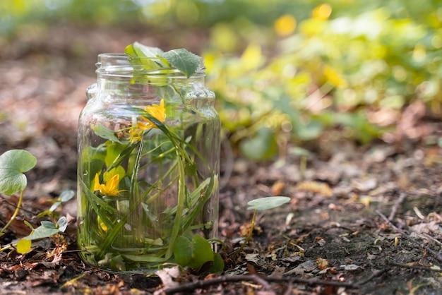 유리 항아리에 노란색 꽃