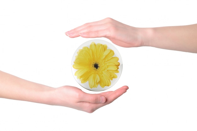 Yellow flower surrounded by hands