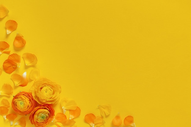 노란색 꽃과 노란색 배경 평면도에 꽃잎