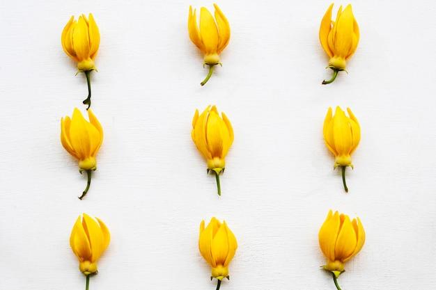 黄色いフラワーアレンジメント