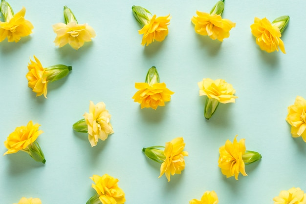 Желтые цветы бутоны на зеленом фоне мяты, текстура, узор
