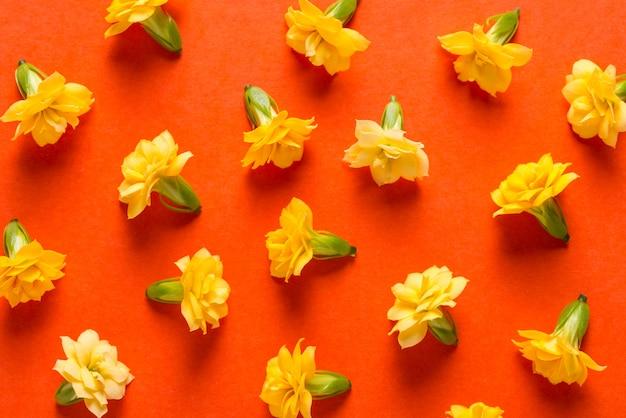 オレンジ色の背景、テクスチャ、パターンの黄色い花のつぼみ