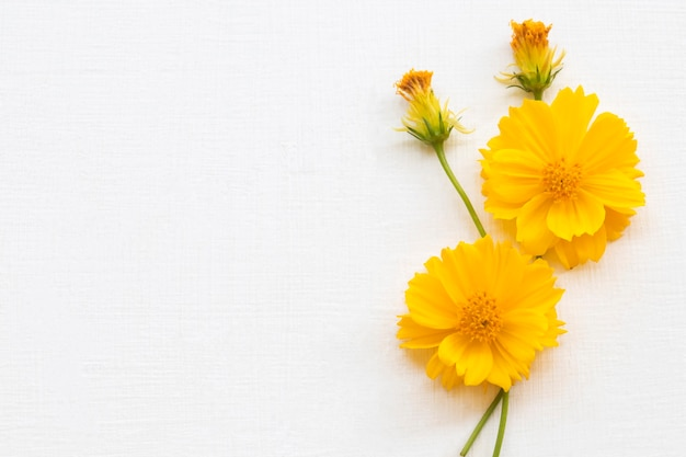 黄色い花コスモスアレンジメントフラットレイスタイル