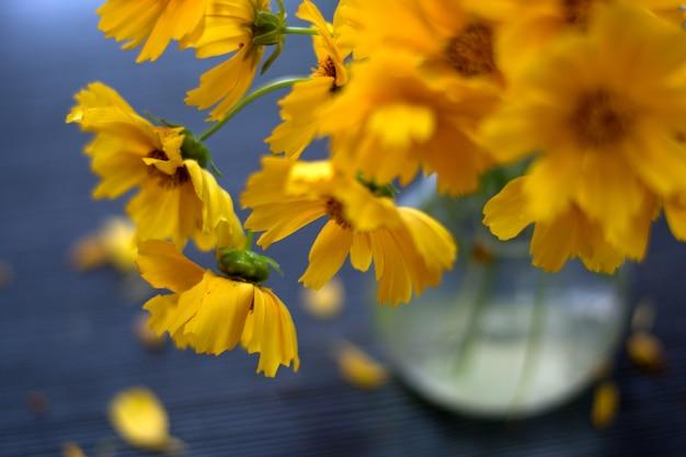 꽃병에 노란색 꽃 데이지입니다. 선택적 소프트 포커스