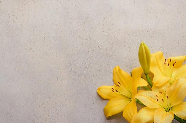 Желтые цветы на сером фоне бетона