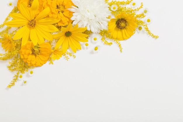 흰색 바탕에 노란색 꽃
