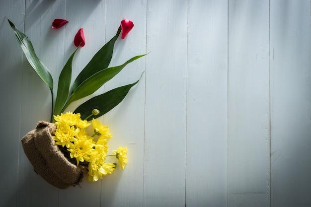 빛과 그림자와 흰색 나무 배경에 노란 꽃