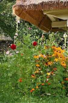 田舎の家屋敷のわらぶき屋根の下の黄色い花