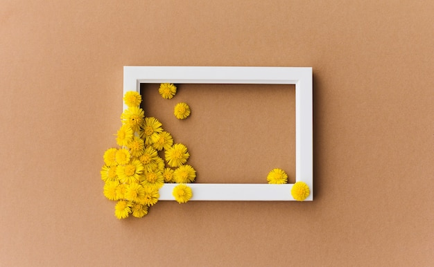 Yellow flowers on a white frame isolated on brown background
