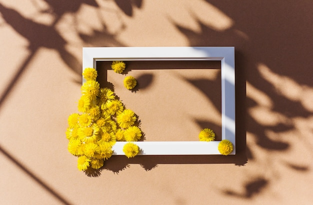 Yellow flowers on a white frame with natural shadows isolated on brown background