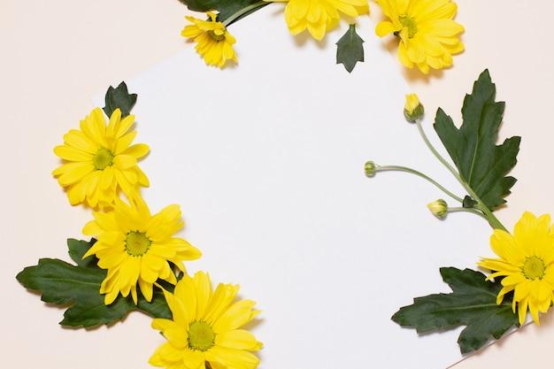 열지 않은 꽃 봉오리와 녹색 잎이있는 노란색 꽃은 빈 흰색 사각형과 비교하여 베이지 색 배경에 놓여 있습니다. 꽃 빈 모형. 개념, 봄 휴가를위한 템플릿