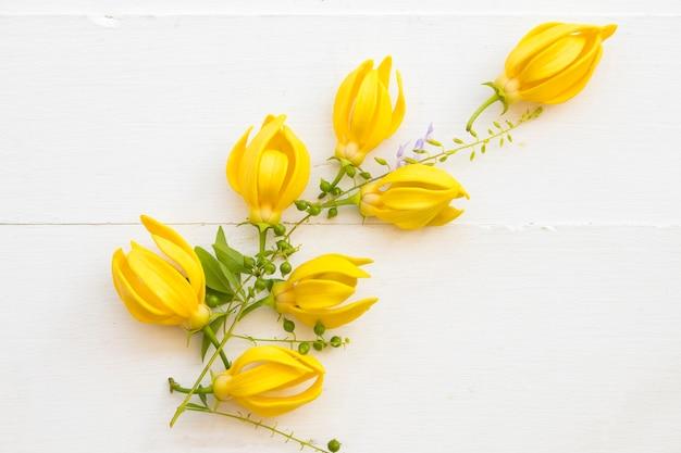 黄色い花イランイランアレンジメントポストカードスタイル