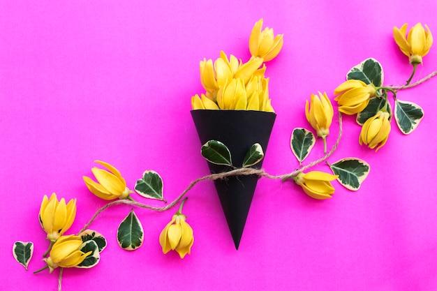Желтые цветы иланг-иланг на розовом