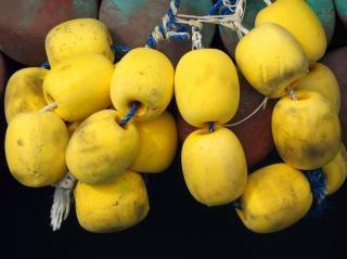 Yellow foam floats