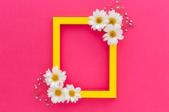 ピンク色の表面に白いデイジーと赤ちゃんの息の花で飾られた黄色いフレーム