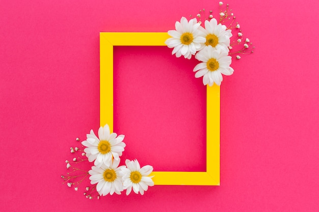 Yellow frame decorated with white daisy and baby's breath flowers over the pink surface