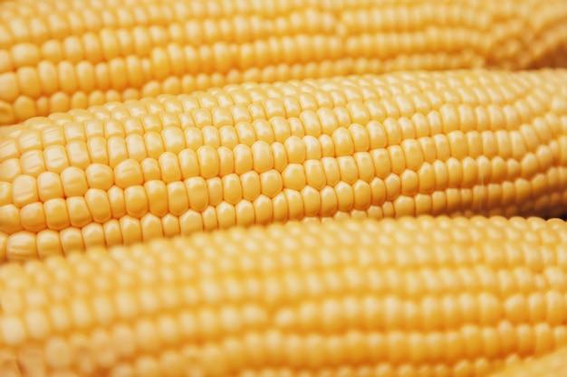 Желтый свежий кукурузный фон