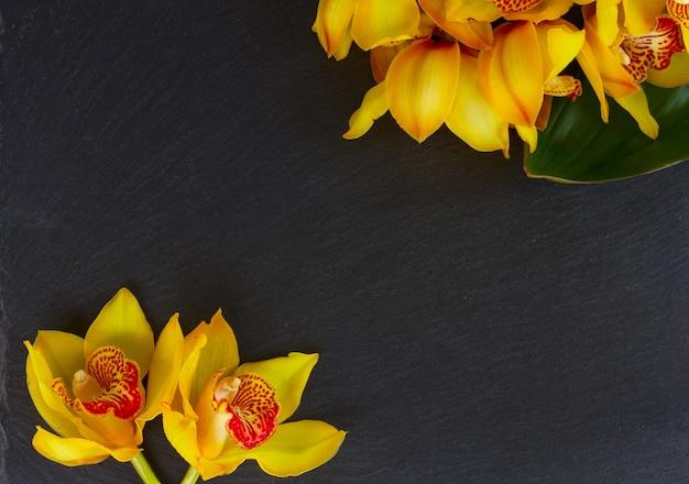 コピースペースと黒のフレームに黄色の新鮮な蘭の花