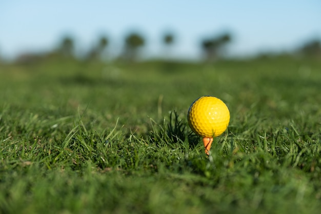 Yellow golf ball on the ground at the driving range