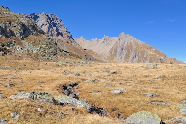 青い空の下で牧草地を横切る小さな淡水とロッキー山の秋の黄色い草