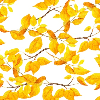 黄色の葉と秋の枝。シームレスパターン、水彩