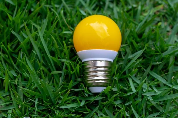 Yellow light bulb fallen on green grass